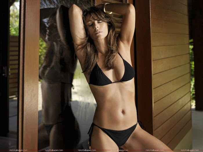 Elizabeth Hurley HD Wallpaper -04