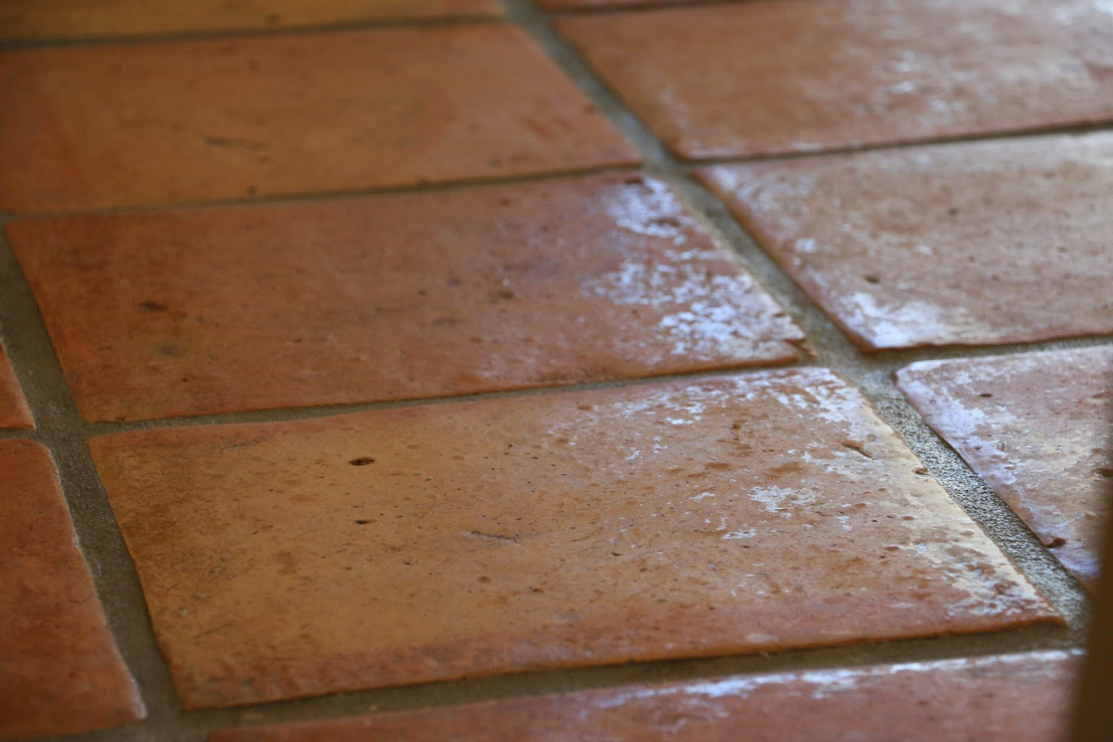 Dusty coyote stripping and sealing a saltillo tile floor img7538eg dailygadgetfo Choice Image
