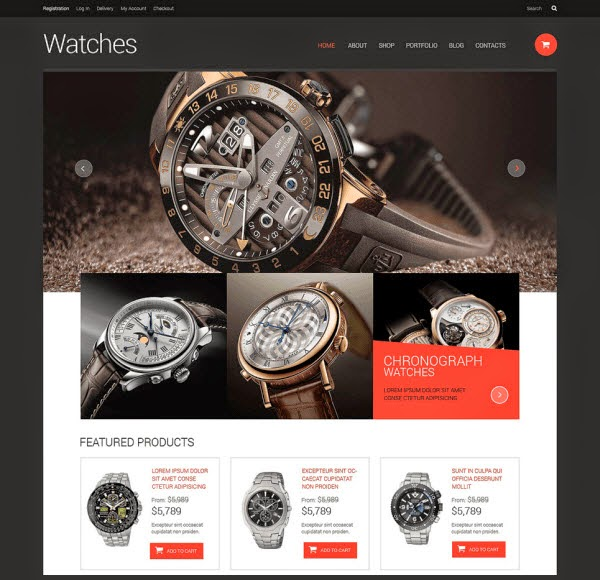 Watches Responsive WooCommerce Theme