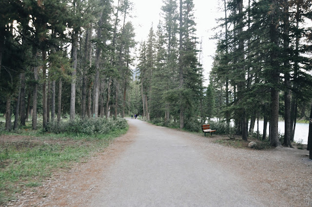 Trail to Town of Banff / Bow River & Bow Falls