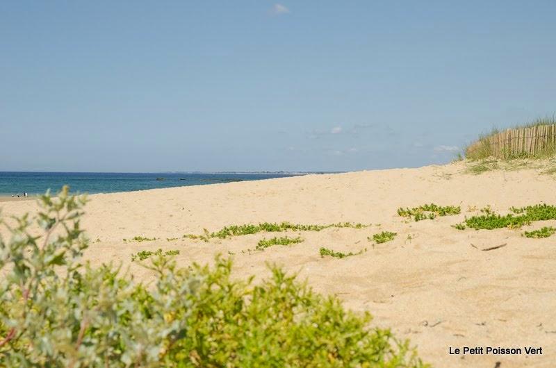 Plouhinec plage
