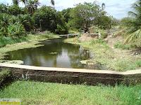 Riacho que vem do riacho do meio e cai no rio Banabuiú.