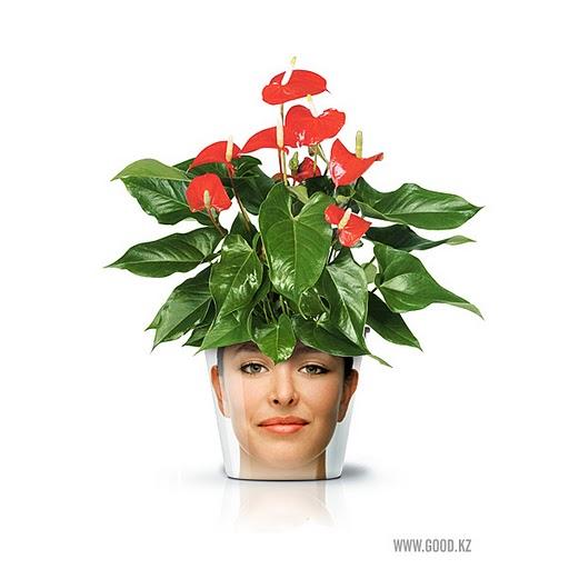 Những chậu hoa độc đáo với khuôn mặt người