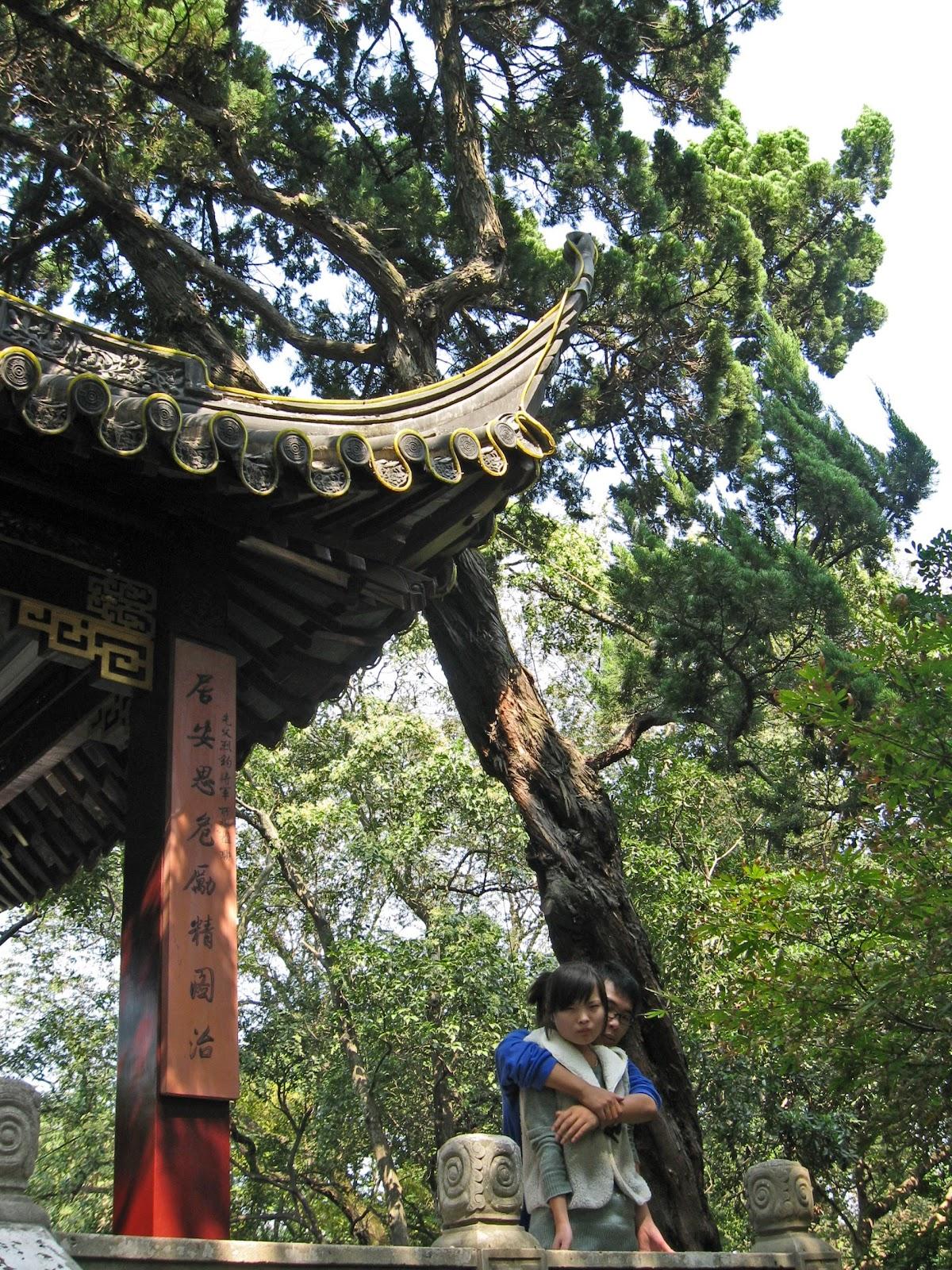 Jax Stumpes Nanxiang 10 22 2011