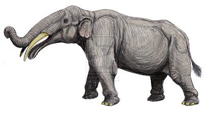 elefantes prehistoricos Gnathabelodon