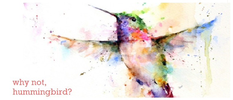 why not, hummingbird?