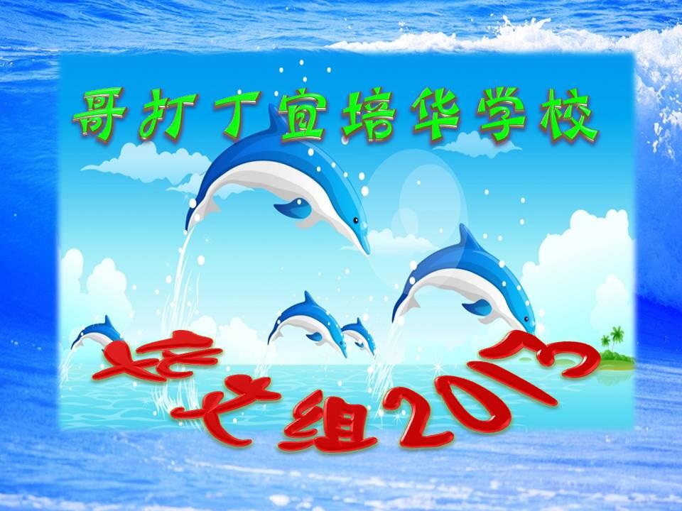 华文组2013