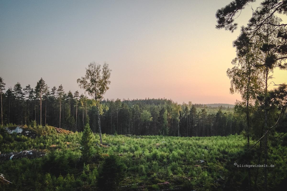 Sonnenuntergang über den Wälndern Schwedens