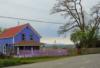 PURPLE HOUSE!