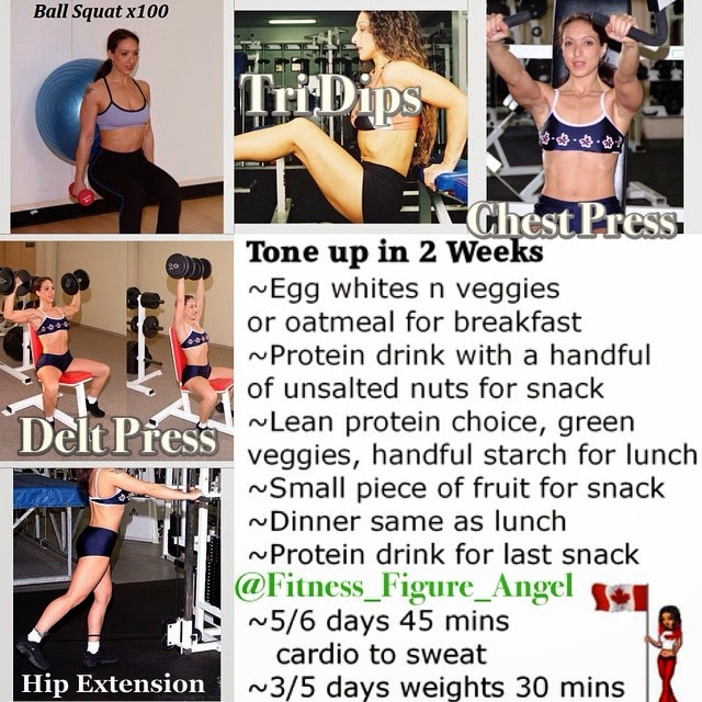 Sample Meal and Exercises