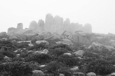 Dolerite boulders on the southern end of the summit plateau, Mount Wellington - 2nd May 2011
