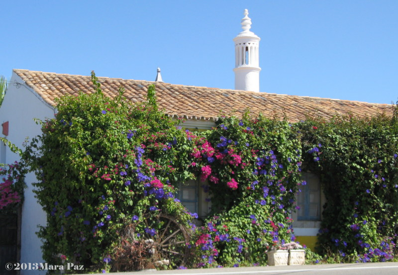 Typical Algarve house