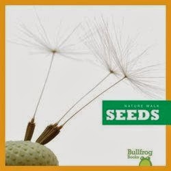 bookcover of SEEDS!  (Nature Walk)  by Rebecca Stromstad Glaser