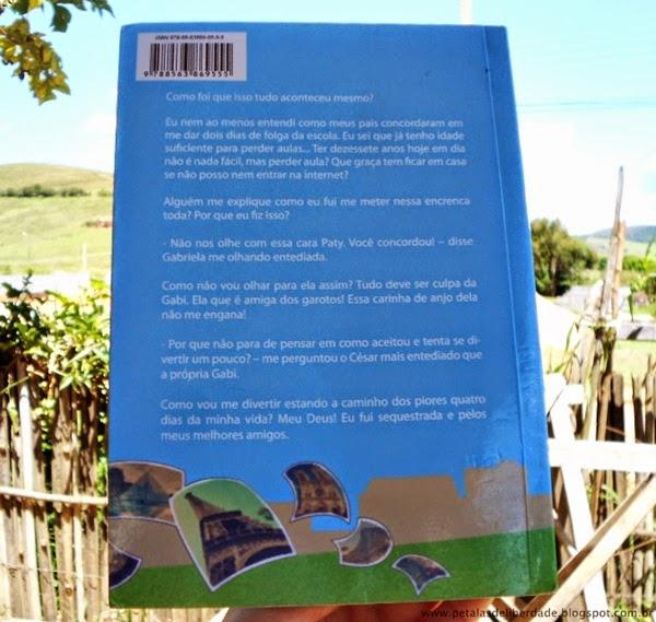 livro, Confusões em Paris, Vanessa Sueroz, resenha, sinopse, contracapa, trechos, onde comprar
