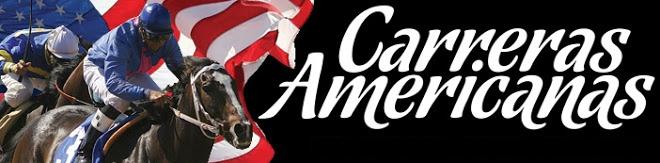 REGALOS PARA LAS AMERICANAS  Americanas%2Bvivo