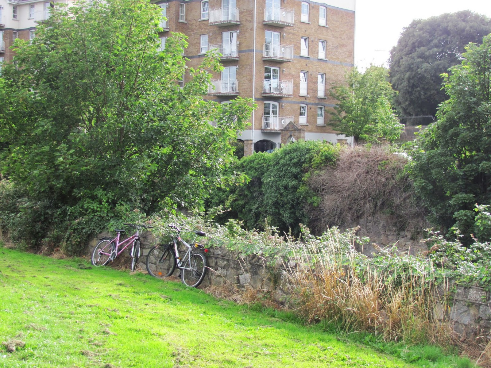 Two bicycles are parked leaning against a stone wall along the River Dodder in Dublin, Ireland