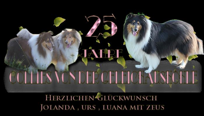 http://colliesvondergleichaushoehle.blogspot.ch/