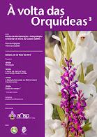 À volta com as Orquídeas
