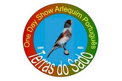 One Day Show Arlequim Português