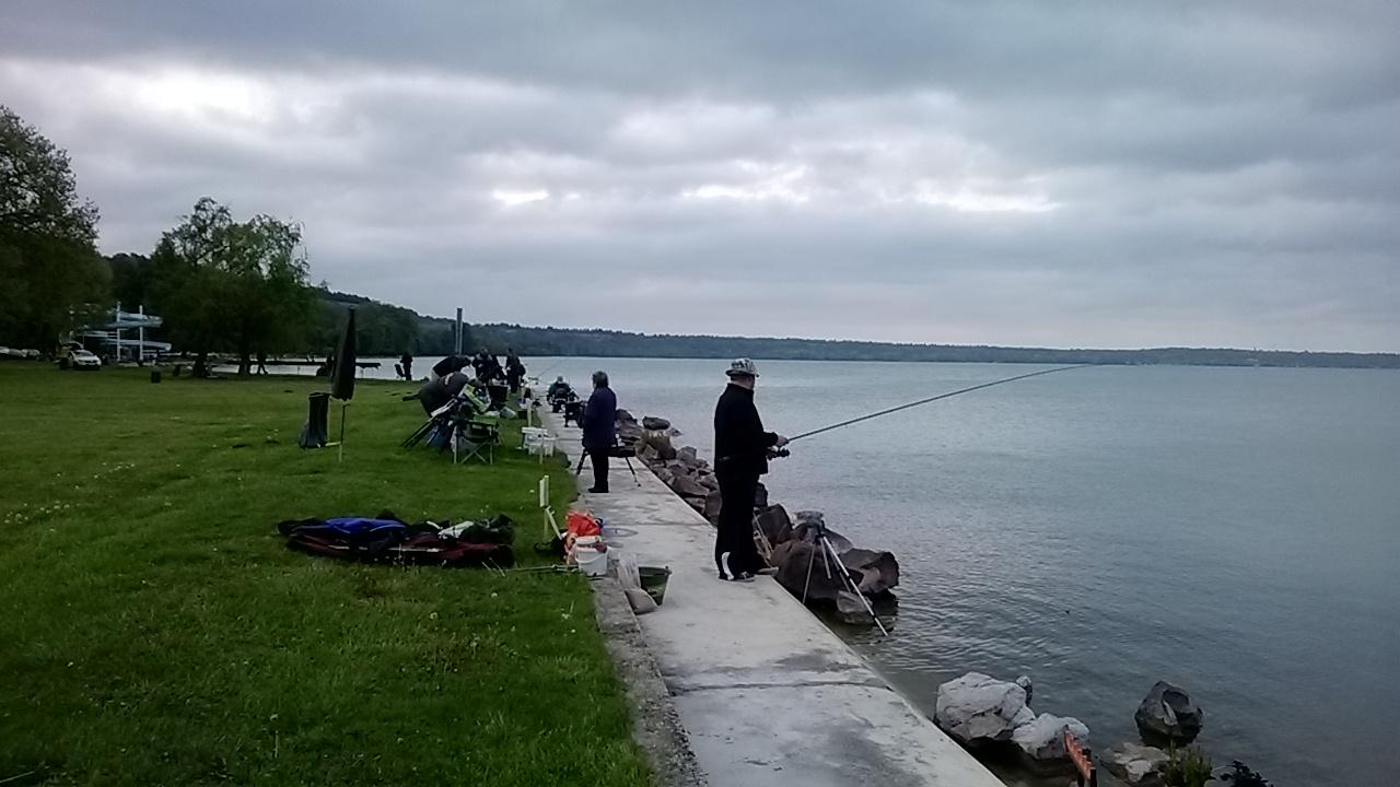 Balatoni horgászverseny 2017 (katt a képre)