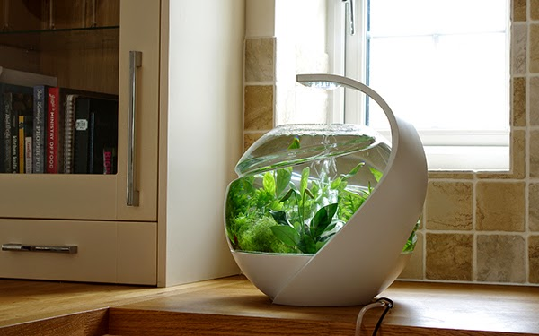 Self cleaning tropical fish tank spicytec for Self cleaning fish tank