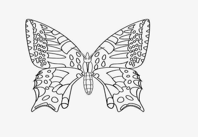 Coloring Butterfly Drawings