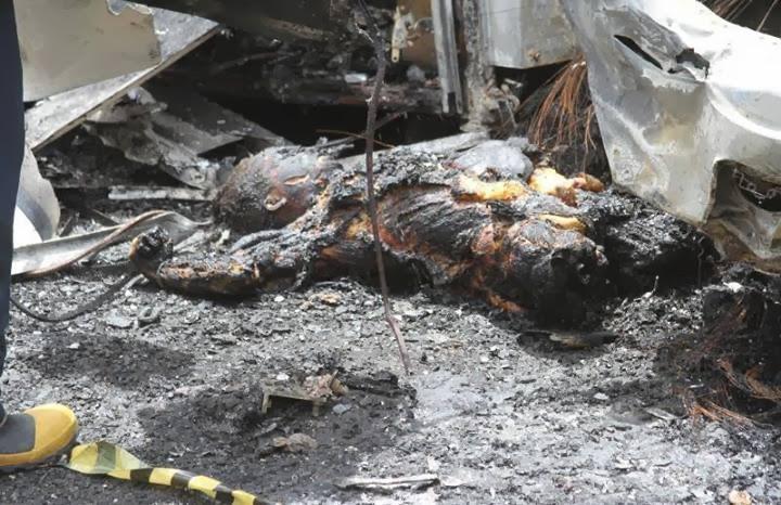 Fotos Reais da morte de Paul Walker - Veloses e Furiosos  MedoVivo