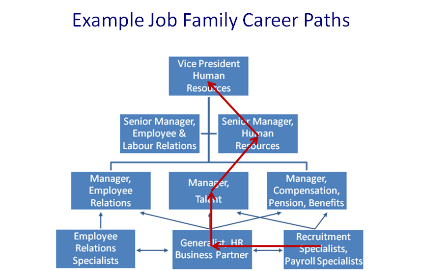 career path framework ppt video online download