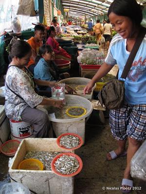 Bangkok Klong-Toye-Market