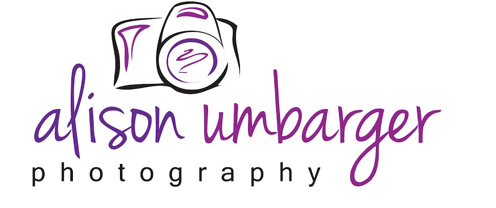 alison umbarger photography