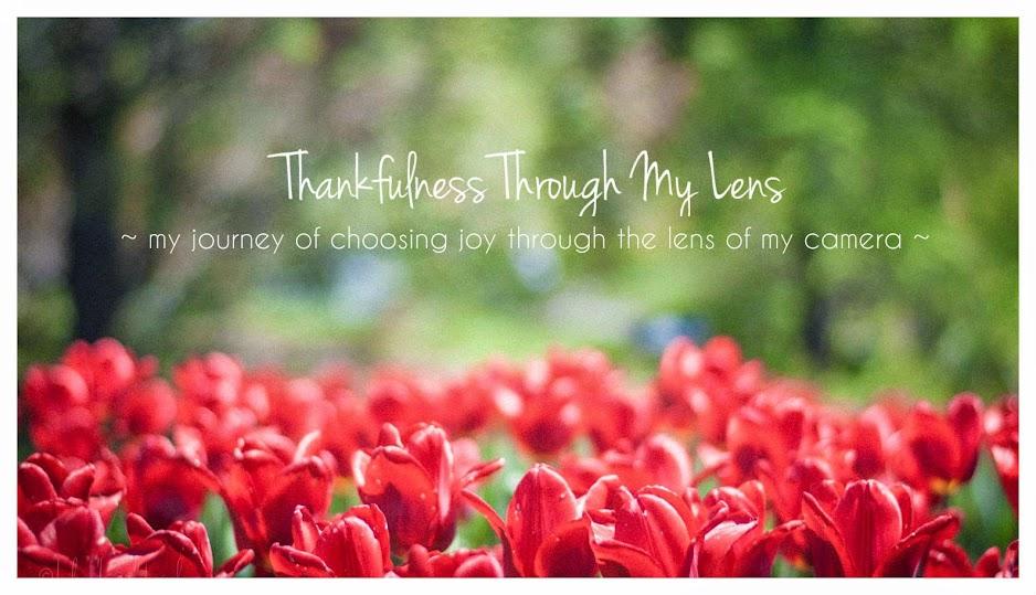 Thankfulness Through My Lens