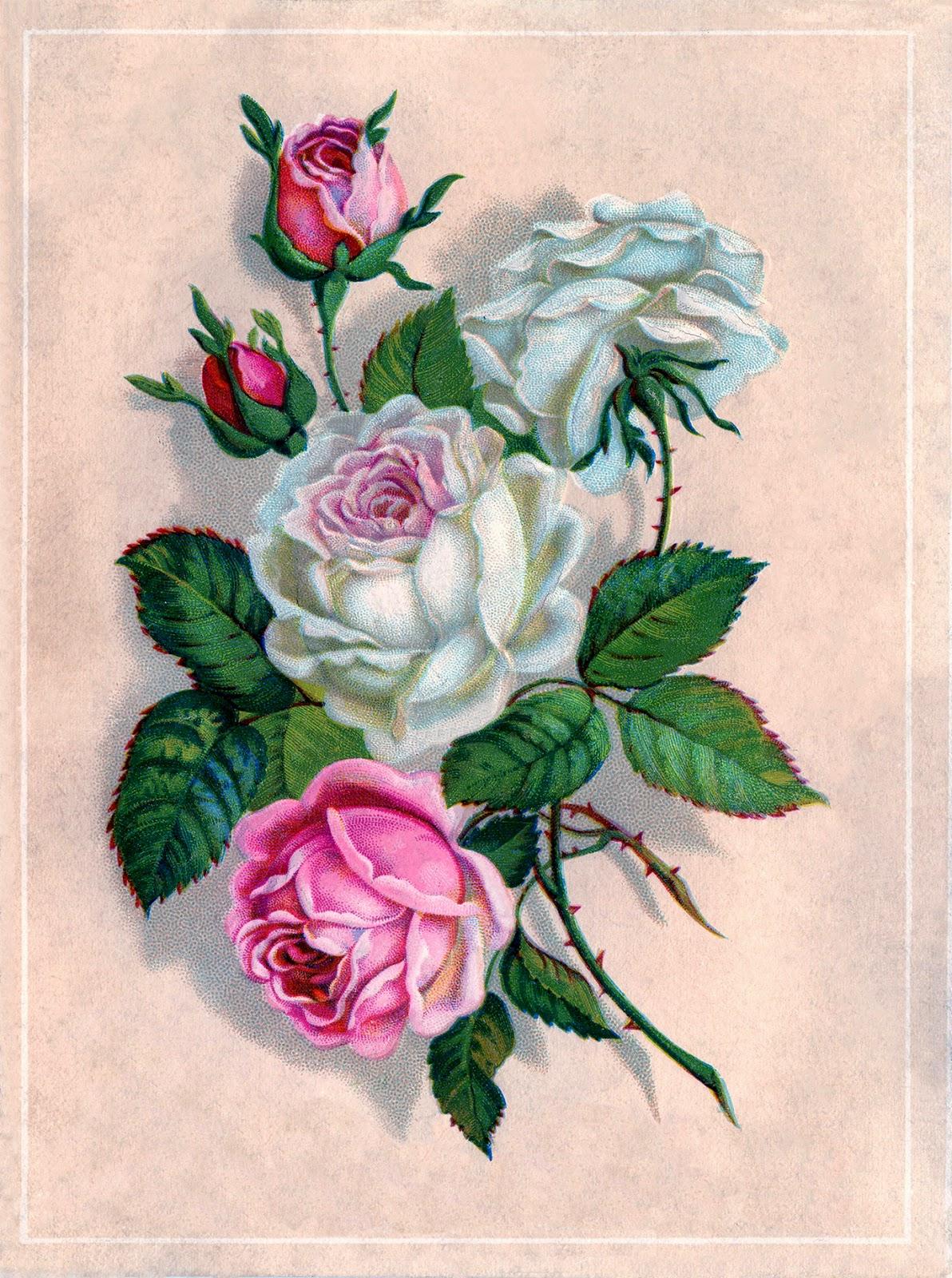 L minas para d coupage flores - Laminas decorativas para pared ...