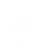 Shop Small on November 29