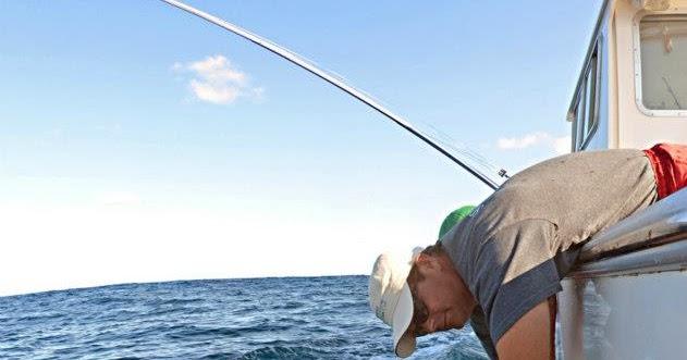 International fishing news usa 700 pound marlin off for Fishing charters falmouth ma