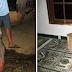 Pencuri Kotak Amal Masjid Tertangkap Warga