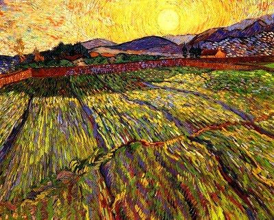 Campos de trigo com sol nascente