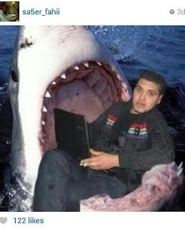 R.I.P Photoshop
