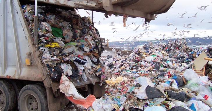 Models of Sustainability: Sweden Runs Out of Garbage