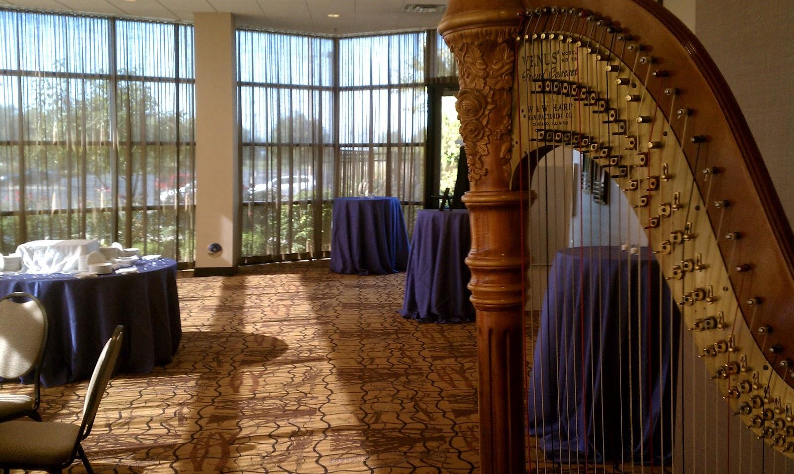 South Bend Wedding Reception Music ~ Harpist at the Hilton Garden ...