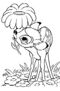 a desenhar Bambi colorir