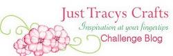 Just Tracys Challenge