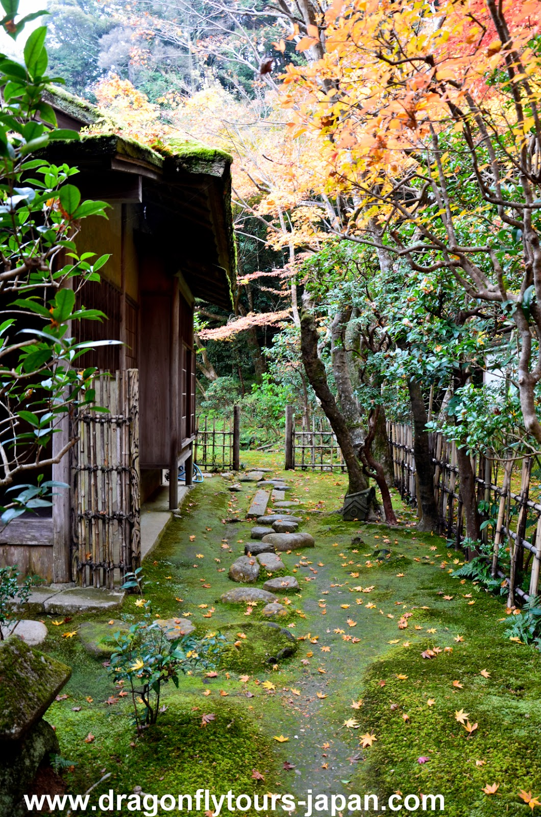 Nanzen In Zen Garden Kyoto Dragonfly Tours Japan