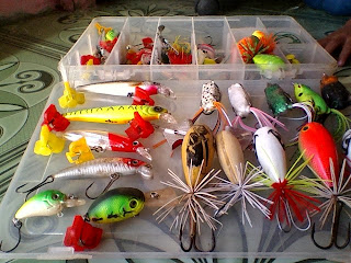 Umpan untuk mancing ikan gabus