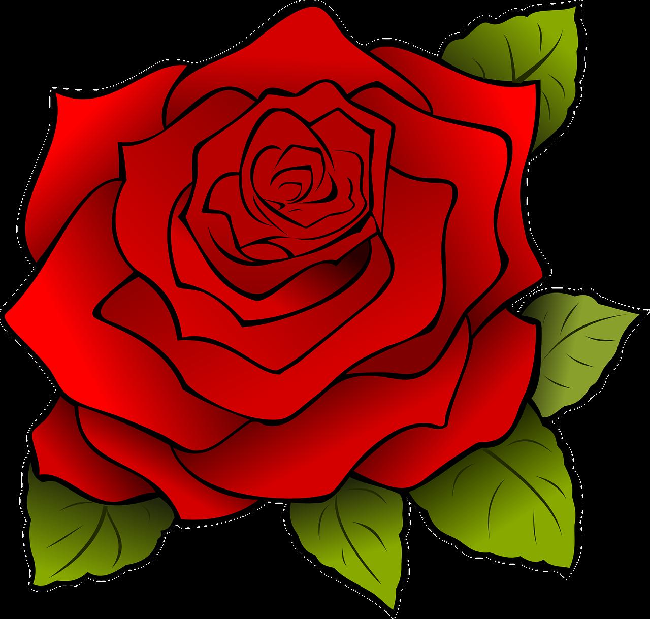 Clipart kuvat: Clipart ruusu