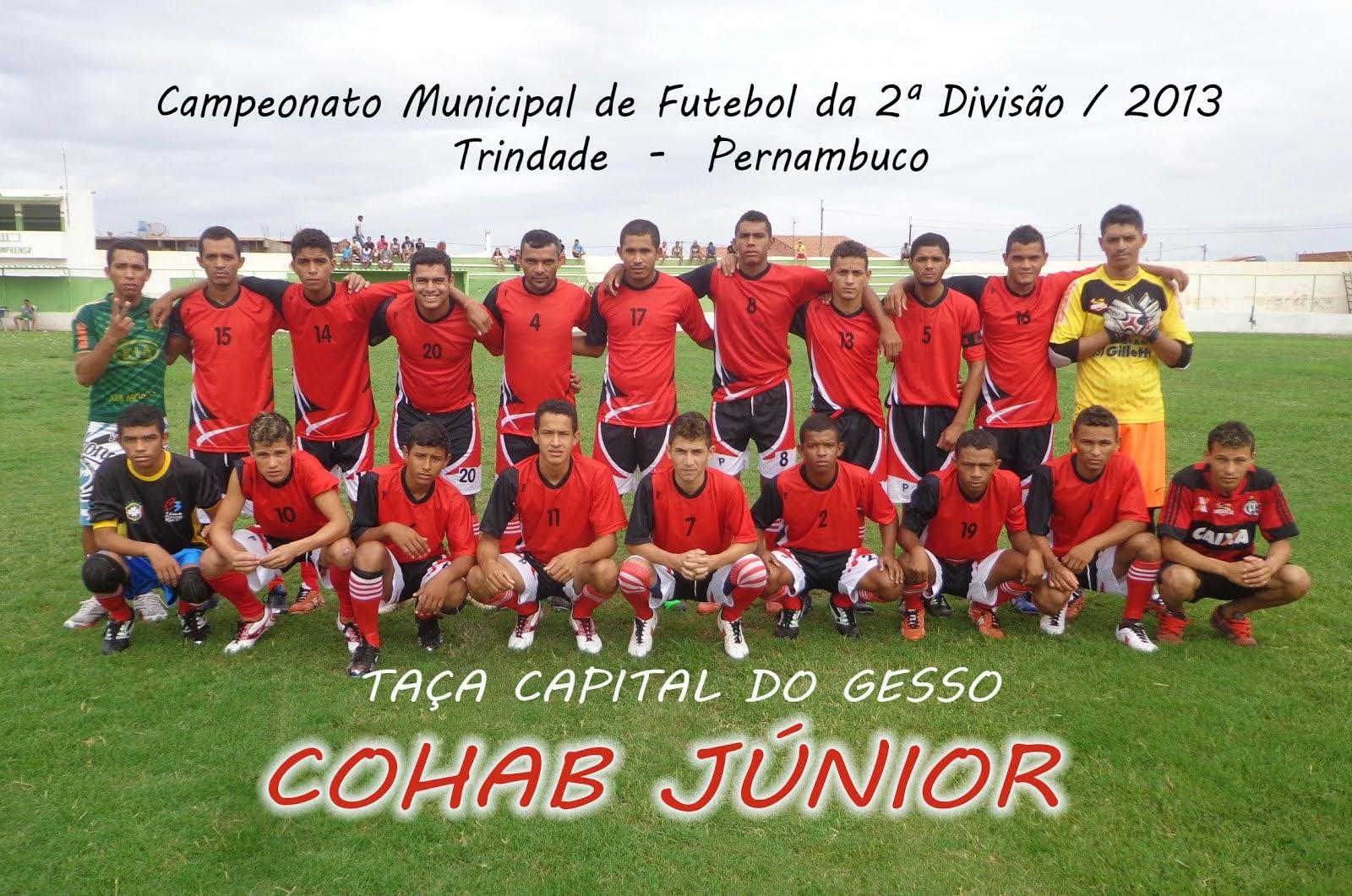 Segunda Divisão 2013