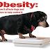 Ποιοι σκύλοι είναι επιρρεπείς στην παχυσαρκία;