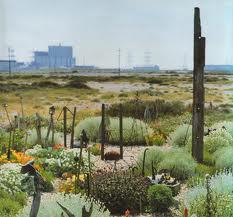 Misterplant un jardin d 39 artiste le jardin de derek jarman for Artistes de jardin