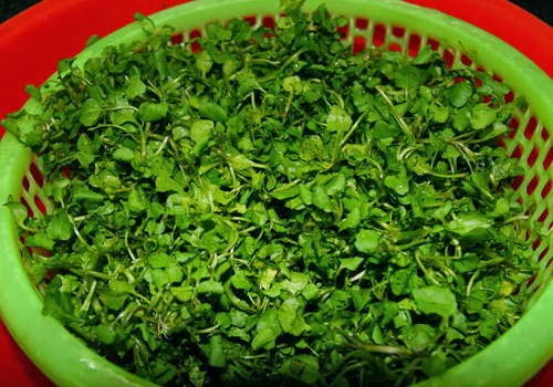 Watercress Soup with Grinded Prawn - Canh Cải Xoong Tôm Tươi