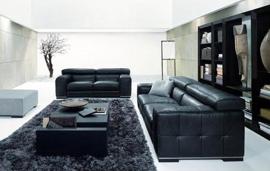 Black & White Living Rooms Design Ideas