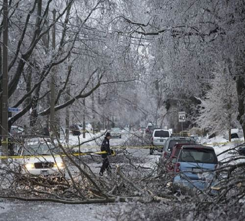 ice_storm_in_toronto_2013_photo